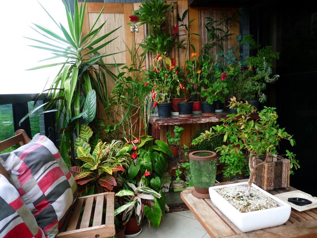 Sala no jardim ou jardim na sala inspira o decorhelo for Casas e jardins simples